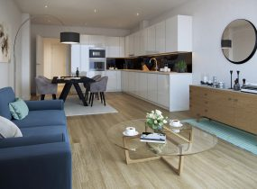 singer-mews_open-plan